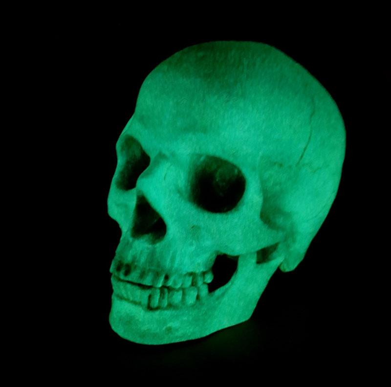 Night Movez Skull